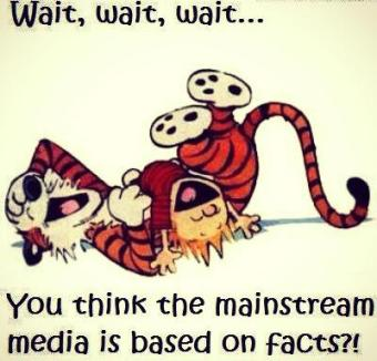 mainstream media based on facts