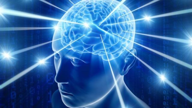 Brain  viral mashable more