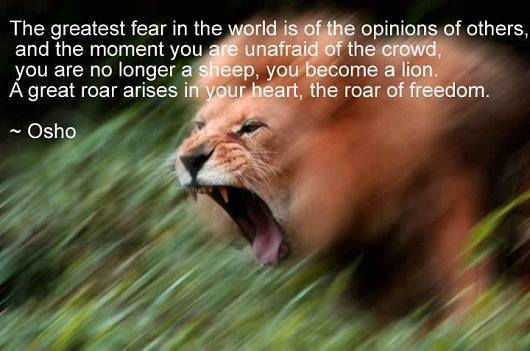 lion fearless