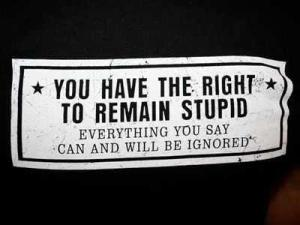 stupid you have the right to remain