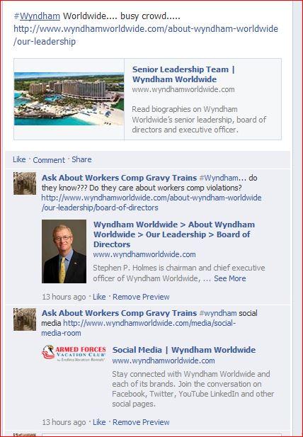 WYNDHAM SOCIAL MEDIA  JULY 2013
