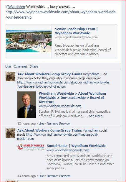 WYNDHAM SOCIAL MEDIA  JULY 2013
