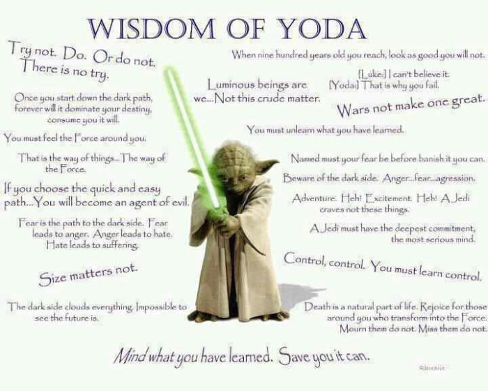 yoda wisdom of
