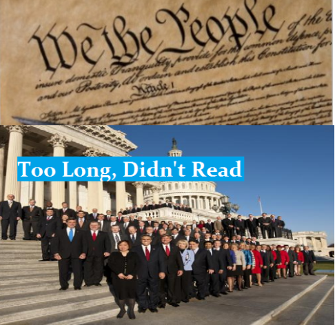 constitution  too long didnt read