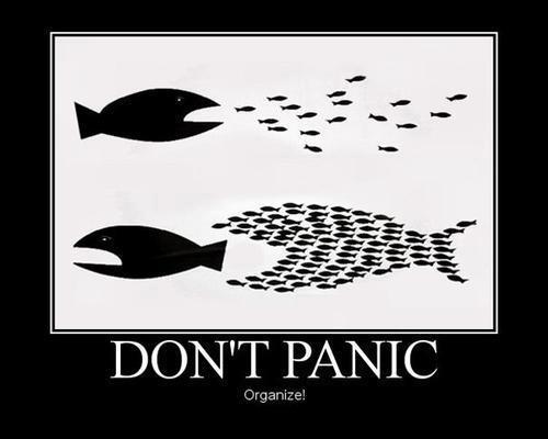 organize do not panic