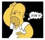 Homer  Doe  Doh