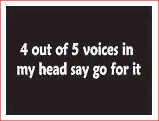 4 out of 5 voice say GO FOR IT